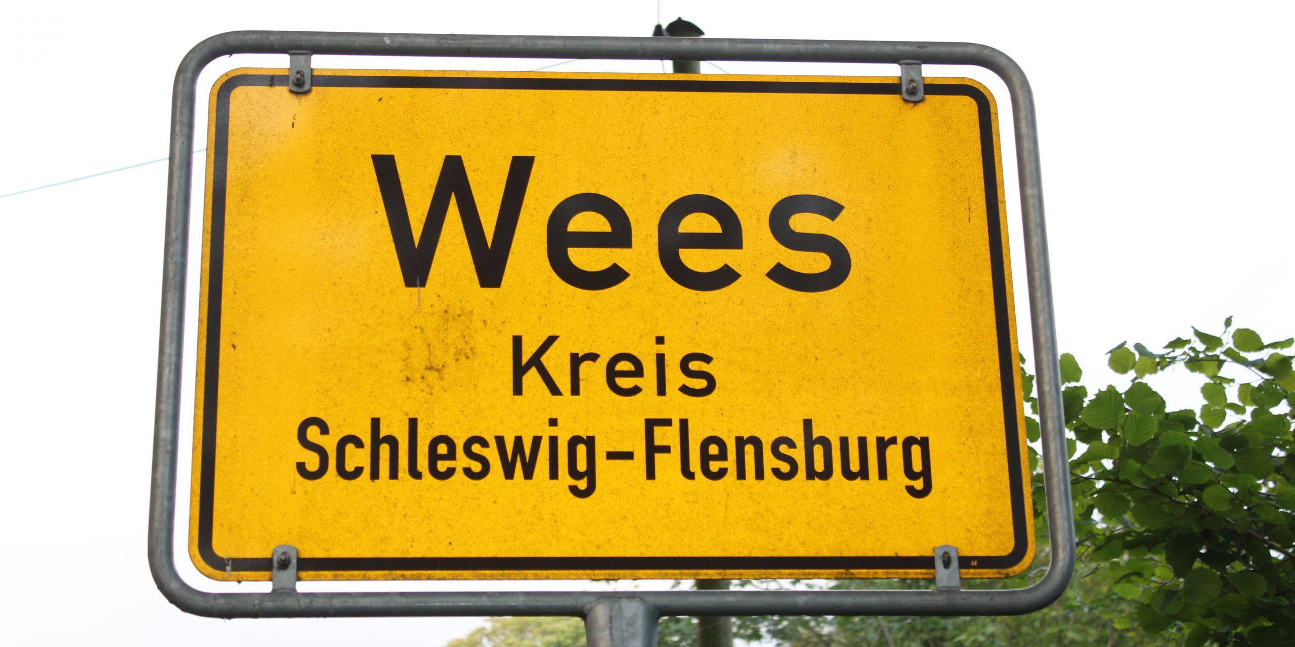 Bis 1997 war Wees ein Ort ohne Arzt. Die Entwicklung des Dorfes mit neuem Einkaufzentrum und einem Gewerbegebiet führte dazu, dass nun auch eine Arztpraxis im Ort sein sollte.