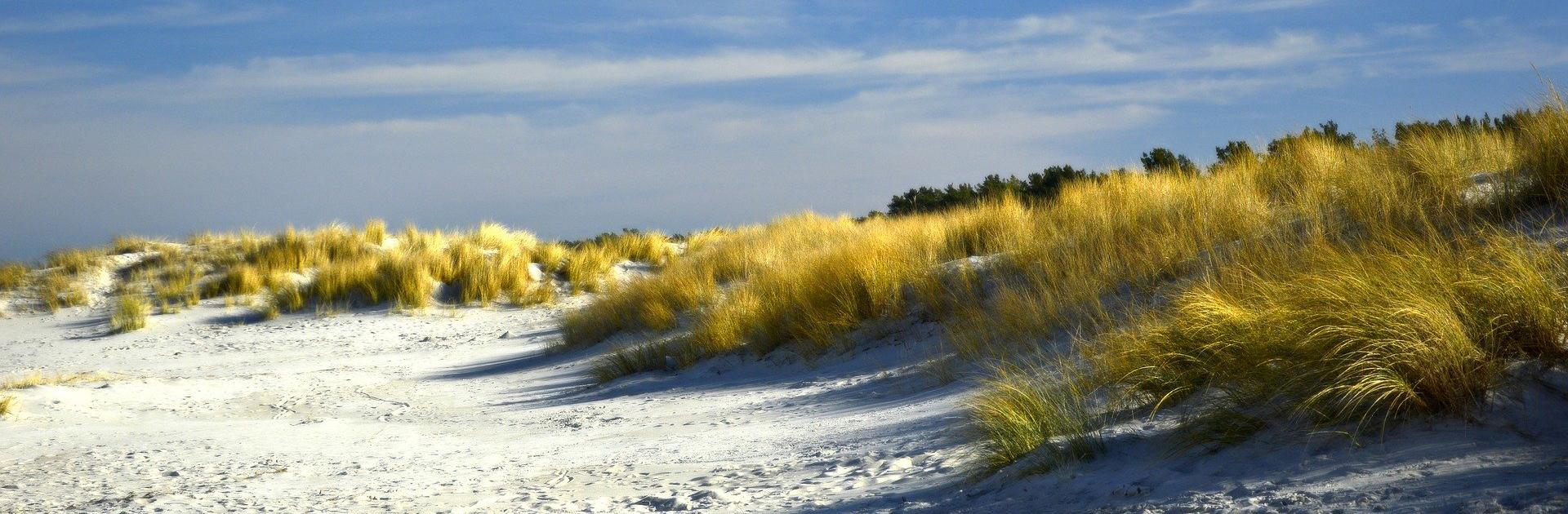 dunes_slider